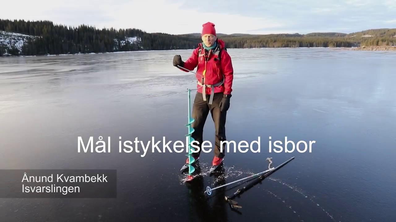 beste isbor
