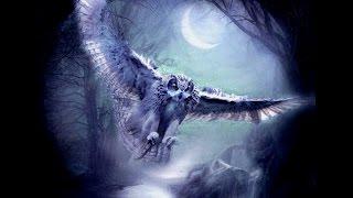 mqdefault - Символ совы и его магическое значение