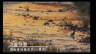 가을아침 [바닥가풍경]