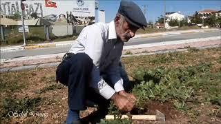 Malatya Göztepe'de hasta eşime bakıyorum, çalışmadan duramam diyen dayı ve yine Malatya sokakları👌❤🌹