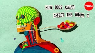 How sugar affects the brain - Nicole Avena(View full lesson: http://ed.ted.com/lessons/how-sugar-affects-the-brain-nicole-avena When you eat something loaded with sugar, your taste buds, your gut and ..., 2014-01-07T16:04:45.000Z)