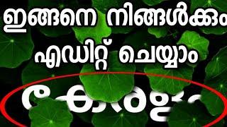Snapseed special photo editing tips and tricks malayalam-ഇലകൾക്കിടയിൽ കേരളം