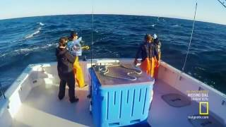 Video Wicked Tuna   National Geographic Chanel download MP3, 3GP, MP4, WEBM, AVI, FLV Oktober 2018