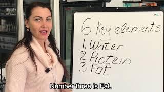 5 Pillars of Health     Nutrition w Dr Ausra