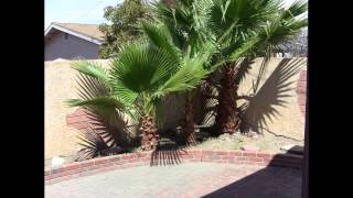 Oxnard Bank Owned Homes 4 Bedroom For Sale, Oxnard California Homes For Sale