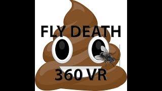 360 ways to die #2 - Fly Death [VR 360]