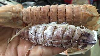 2 Cách lột vỏ lấy thịt tôm tít (bề bề) | How to eat Mantis Shrimp