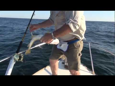 Deep Sea Fishing In The Gulf Of Maine With Atlantic Adventures And Capt. Jim Harkins - Episode 1