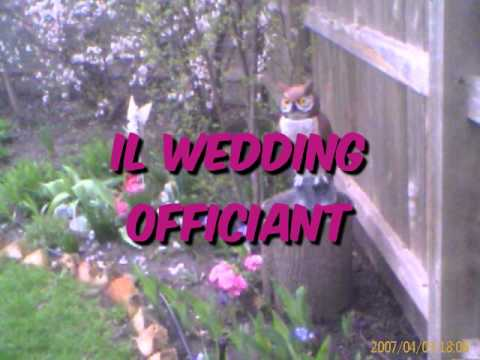 chicago-area-destination-wedding-venue---elope-to-pine-manor-il-wedding-officiant