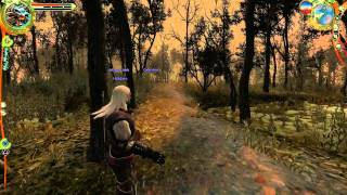 The Witcher Enhanced Edition Gameplay HD