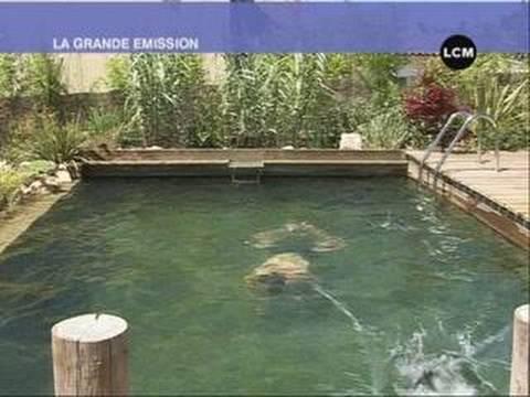 Piscines naturelles : nagez écologique !