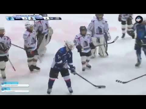 Это месилово! Комментатор озвучивает детскую драку на хоккейном турнире