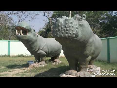 Fossil park-Shivalik fossil park Suketi kala Amb hp
