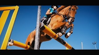 Video We are One | Amazing Horse Riding download MP3, 3GP, MP4, WEBM, AVI, FLV Januari 2018