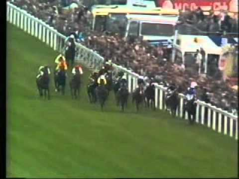 Horse Racing 1984 Epsom Derby Secreto - El Gran Senor.avi