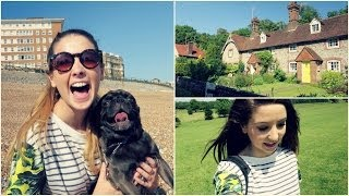 Summer Lunch & Pug Walking