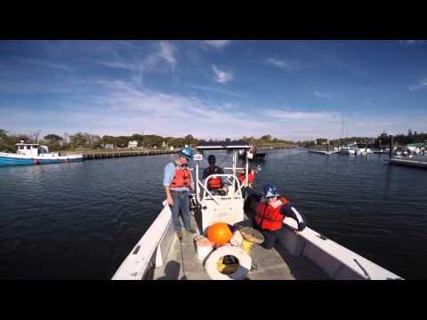 Vessel Training