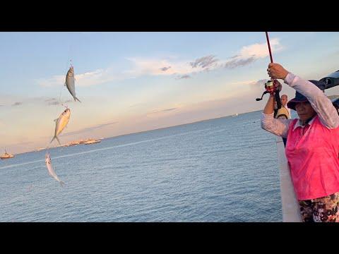 Afternoon Fishing In Darwin NT