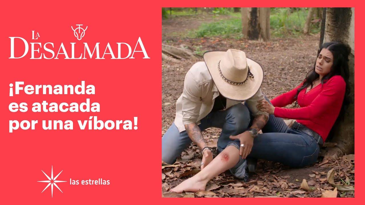 Download La Desalmada: ¡Fernanda le pide a Rafael que no la deje morir! | C- 13 | Las Estrellas