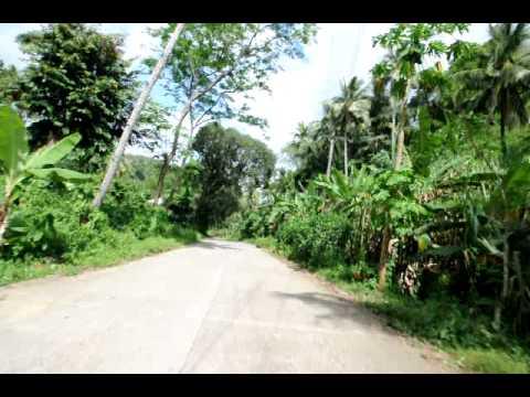 Philippines, road trip , south Negros, between santa catalina and pamplona