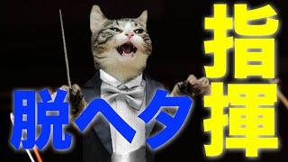 脱下手な合唱指揮|クラス合唱で指揮を振る人向け
