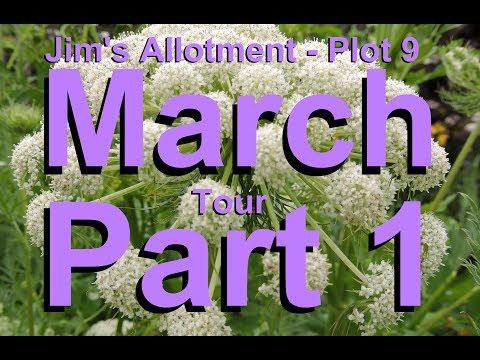 Jims Allotment   Plot 9   March Tour Part 1   Greenhouse Prep and Kale