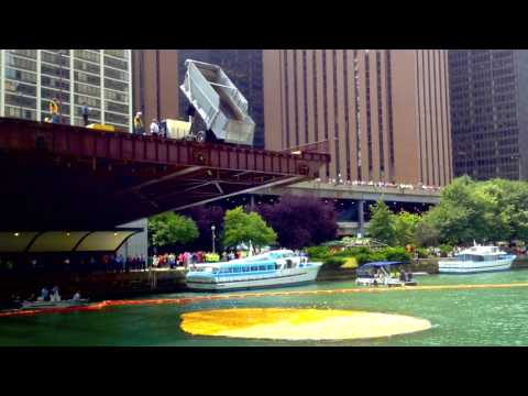Rubber Ducky dump on the Chicago River