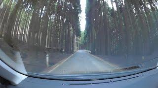 鳥取岡山県道7号智頭勝田線、右手峠、r296-r357  車載動画