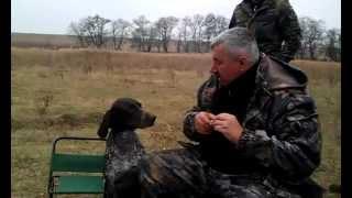 Man´s Best Friend- Dog Fetches Vodka :) Hd