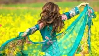 Main Phir Bhi Tumko Chahunga// Lyrics // 4K Dj Mp3 Song न्यू 2020,