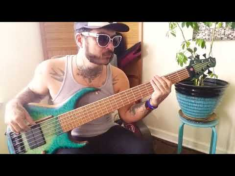 Vulfpeck's Lonely Town(feat. Theo Katzman) bass cover