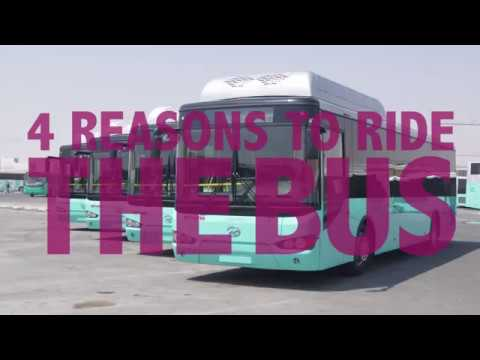What's so terrible about the buses of Qatar?