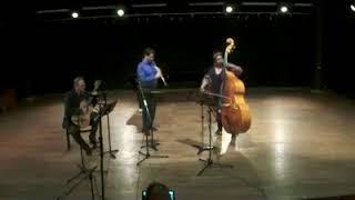 Manhã de Carnaval de Luís Bonfá - Arranjo Qualea Trio (2017)