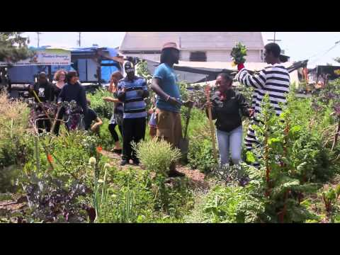 Muse Video Episode 4: Food Justice