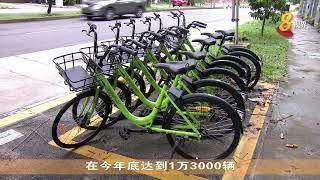 共享单车扩大车队 预计年底达到1万3000辆
