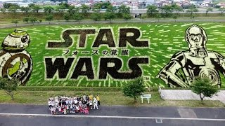 Star Wars merchandise in Japan for Force Awakens