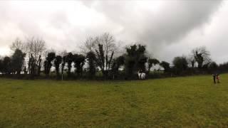 Brosna Foxhounds Daingean Hunt 2014.