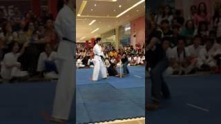 Female Kyokushin Karateka Breaks Bat