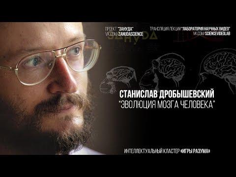 Станислав Дробышевский. Эволюция мозга человека