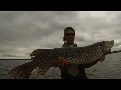 How To: Pike Fishing On Lac Seul