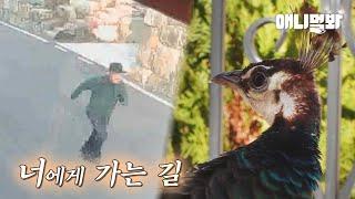 마을에 나타난 공작새를 잡을 수 있는데도 잡지 않았던 이유ㅋㅋㅣThe Secret Of A Peacock W…