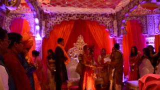 Indian Wedding IV