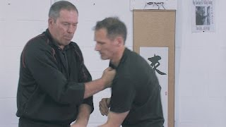 Wing Chun Kung Fu Chi Sau Paak Sau