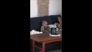 Baby Gets His Finger Stuck In His Storybook As He Closes It