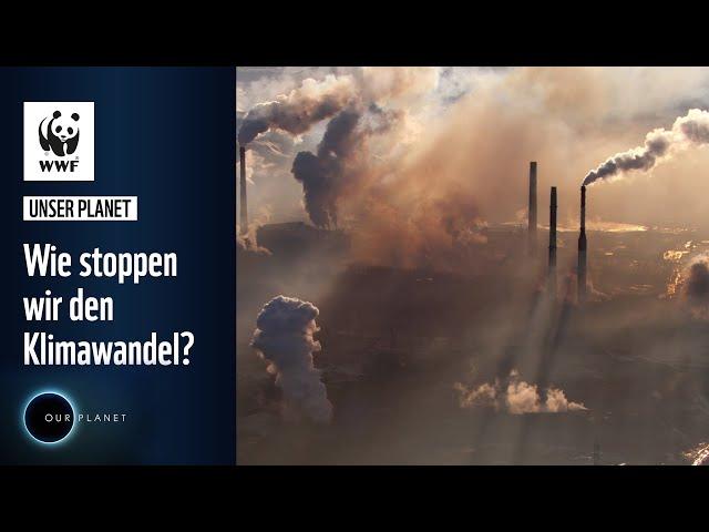 Wie stoppen wir den Klimawandel? | WWF Unser Planet