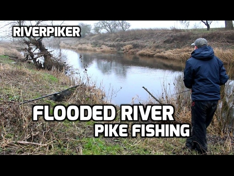 Flooded river pike lure fishing - (video 167)
