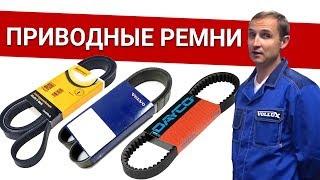 Приводные ремни на Вольво - обзор ВСЕХ марок (оригинал, CONTITECH, DAICO) Былины о зап.частях Vollux