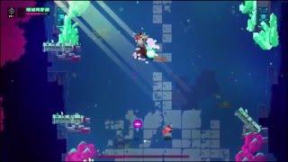 Hyper Light Drifter - The Hanged Man Boss (West) - Flawless and No Upgrades