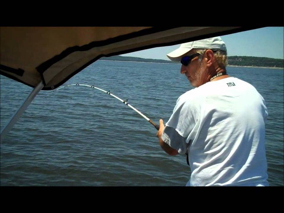 Hybrid Striper Bass Fishing On Truman Lake MO - YouTube