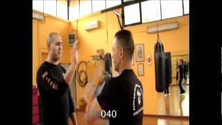 Wing Chun High skill Natural Fighting